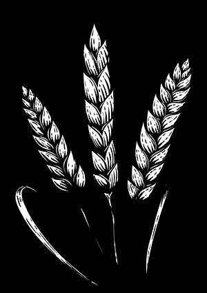 mfr-maison-familiale-rurale-grand-est-formation-agriculture-elevage